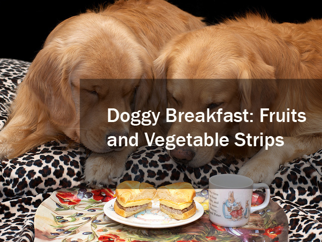 Doggy-Breakfast-Fruits-and-Vegetable-Strips