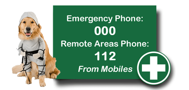 PHONE-NUMBERS-Emercency