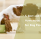 5 Best and Healthy Homemade Recipes for Dog Food