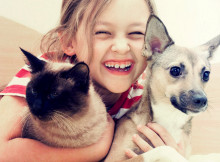 summer pet care tips for dogs and cats